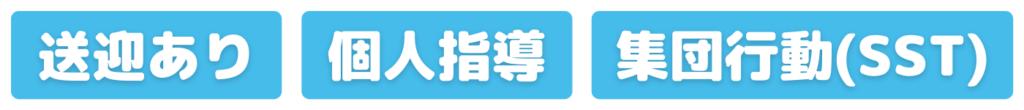 送迎あり・個人指導・集団行動(SST)